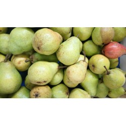 "Poire WILLIAMS BIO ""les 500 g"" (3,94€ / kg)"